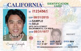 blank drivers license template eliolera com