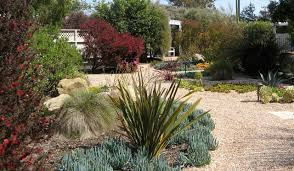 incredible drought tolerant landscaping ideas beach style