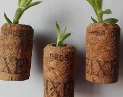 Flower Pot Wedding Favors - air plant favor etsy