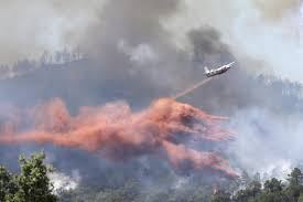 Wildfire Test Questions by Wildfires Threaten French Riviera Inadequate Aircraft Cited