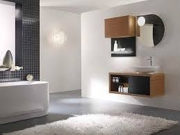Contemporary Bathroom Tile Design Ideas by 124 Best Bathrooms Images On Pinterest Bathroom Ideas