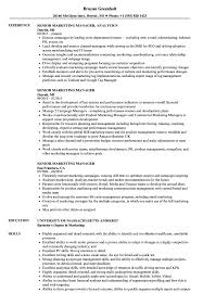 sle resume for digital journalism conferences 2016 senior marketing manager resume sles velvet jobs