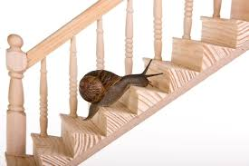 Handrail Synonym How To Learn Vocabulary For The Toefl A Brilliant 5 Step Method