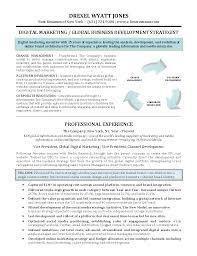 Best Job Resume Pdf by Marketing Digital Marketing Resume