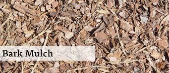 12 types of mulch that you can use in your garden
