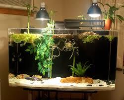 kingsnake com photo gallery u003e cages terrariums ponds aquariums