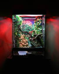 any one use a zoo med terrarium talk to the frog