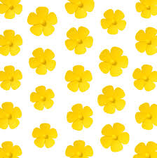 Pantone Yellow by Why You Should Add More Yellow To Your Life Cnn