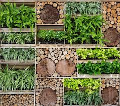 How To Make Vertical Garden Wall - the best plants for your diy vertical garden