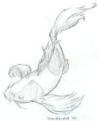 koi sketch by stupendousdan21 on deviantart