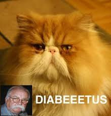 diabeetus cat meme generator dankland super deluxe