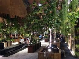 indoor planting 94 best indoor planting images on pinterest indoor interior and