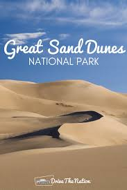 native plants grow on the sand dunes at this beach stock photo great sand dunes national park drive the nation