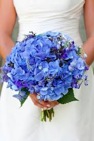 Hydrangea Wedding Download Hydrangea Wedding Bouquets Wedding Corners