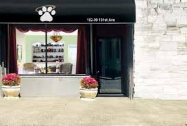 nyc cremation about pet cremation of new york affordable pet loss services nyc