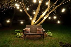 Outdoor Hanging Lights For Trees How To Hang Outdoor String Lights Trees All Home Design Ideas
