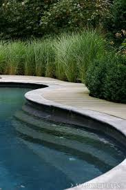 Pool Garden Ideas Best 25 Swimming Pool Landscaping Ideas On Pinterest Pool