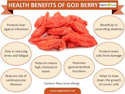 4 Biggest Benefits Of Gel 11 Best Benefits Of Goji Berry Or Wolfberry Organic Facts