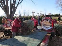 traditions intertwine at tree farm in lake elmo