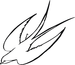 line drawing of flying bird clip art library