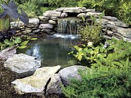 Backyard Pond Ideas With Waterfall Small Pond Ideas Rock Pond Backyard Pond Pacific Ponds
