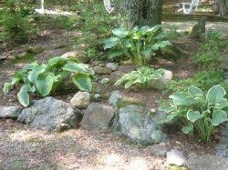Creating A Rock Garden Designing A Rock Garden Landscaping With Rocks And Boulders