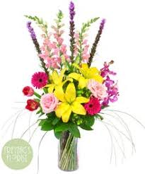 same day just because flowers p2 tx just because flowers same day delivery