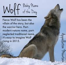 wolf baby name of the day appellation mountain