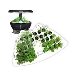 shop aerogarden classic 6 seed starting system at lowes com