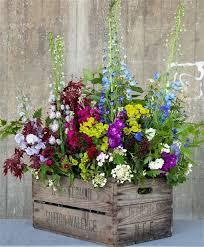 best 25 summer flowers ideas on pinterest summer flower