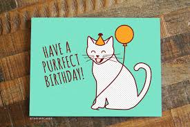 a purrfect birthday cat birthday card tiny bee cards