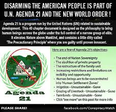 Agenda Meme - agenda 21 meme through a rose tinted lens