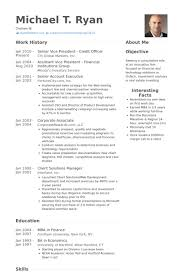 Accounts Officer Resume Sample by It Officer Resume Samples Visualcv Resume Samples Database