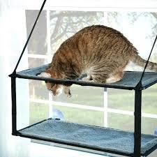 cat hammock window bed gma video seat 10074 interior decor