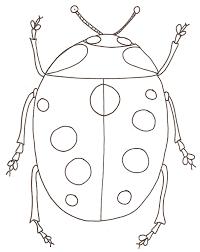 56 dessins de coloriage insecte à imprimer sur LaGuerchecom  Page 1
