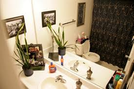 apartment bathroom ideas bathroom decorating ideas apartment therapy house decor picture