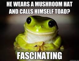 Funny Frog Meme - fascinated frog memes quickmeme