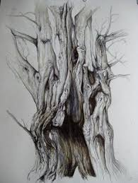 draw birch trees in pen google search how to draw paint etc