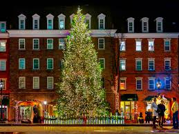 tree lighting to kick in alexandria town