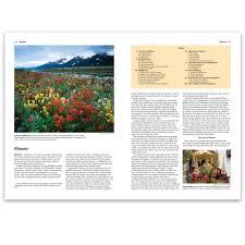 buy new encyclopedia 2014 encyclopedia books world book