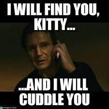 Taken Meme - i will find you kitty liam neeson taken meme on memegen