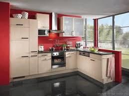 kitchen cabinets dark wood brown laminate wood flooring dark green