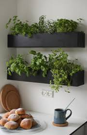 wall mounted herb garden wall plant holdersor mounted hanging holdersindoor holderswall