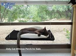 cat window perch holding 2 cats weighted up to 50lb upgrading
