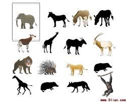 sketsa dari berbagai pakan hewan hewan vektor hewan vektor gratis