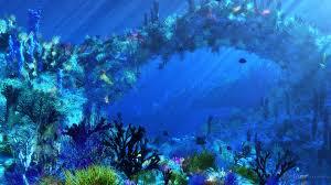 scene coral