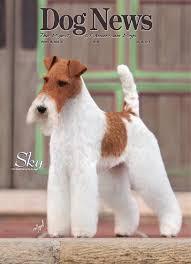 american eskimo dog rescue wichita ks dog news july 26 2013 by dn dog news issuu