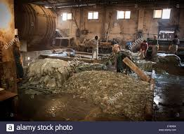 Deer Hide Tanning Companies Leather Tanning Not Morocco Stock Photos U0026 Leather Tanning Not