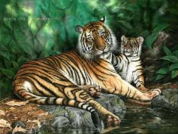 pastel sumatran tiger and cub painting wildlife by roby baer