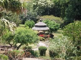 hawaii native plants halawa xeriscape garden board of water supply